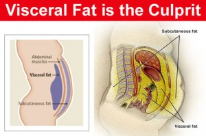 visceral-fat-level